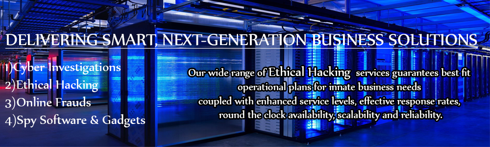 Ethical Hacking Services in Punjab