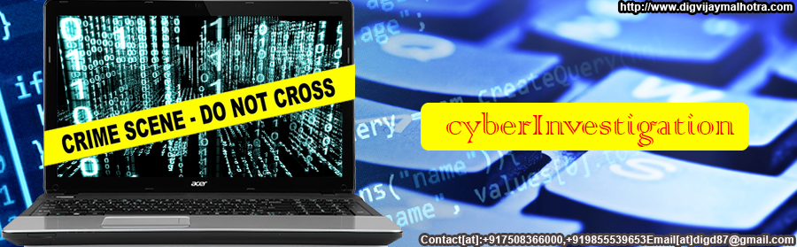 Cyber Investigation in Delhi