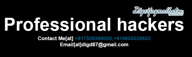 Professional hacker in Rajkot